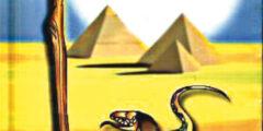سر استخدام الثعبان والعصا على لافتات الصيدليات