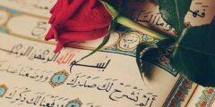 كيف تتعلم التجويد لقراءة القرآن