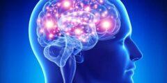 علم النفس ومراحل نشاط تقوم به الذاكرة