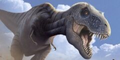 الطيور أصلها ديناصورات بتحول استغرق 50 مليون سنة