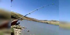 طريقةصيد الاسماك في الأنهار