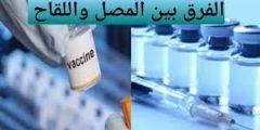 تعرف على الفرق بين المصل واللقاح