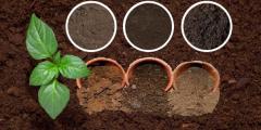ما هي انواع الطين ومكوناته