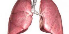 يقوم طعام واحد بتنظيف الرئتين من اثار التدخين