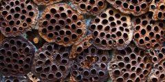 ما هي فوبيا الثقوب وعلاجها