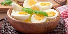 فائدة بياض البيض لكمال الأجسام؟