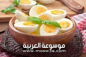 فائدة بياض البيض