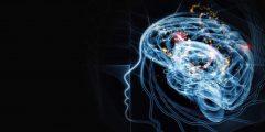 معلومات عن نظرية سيكولوجية الذات