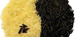 فوائد تناول الأرز البري