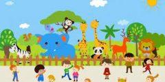 معلومات حول كيفية حماية الحيوانات البرية