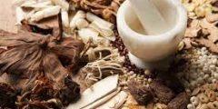 10 من علاجات الطب الصيني التقليدي الغريبة