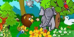 قصة غرور ببغاء وذكاء بومة قصص اطفال جديدة ورائعة
