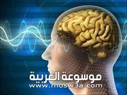 كيف-يؤثر-السكر-على-المخ-؟