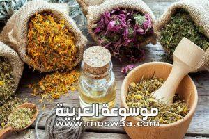 مقالة توضح فيها علاج نزلة البرد بالاعشاب الطبيعية