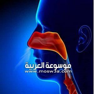 التهاب الجيوب الانفية .. اسبابه وطرق علاجه