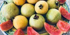 احلى وصفات من الجوافة لتقوية المناعة