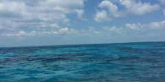 كيف تتحرك مياه المحيطات